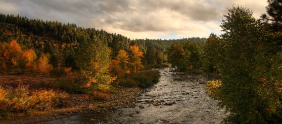 Fall on the Truckee River in Truckee, California